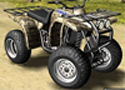 Quad Racer Extreme Game