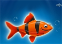 Franky the Fish 1 Game