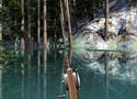 Lake Fishing 2 Games