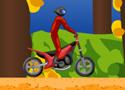 Super Motocross Game